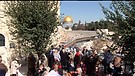 Jerusalem's Temple Menorah & Arab Outreach