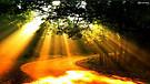 Jesus the Light - Book of John